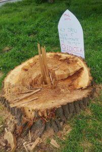 eko drunj1