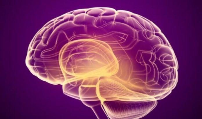 Si të zvogëloni rrezikun nga sulmi në tru